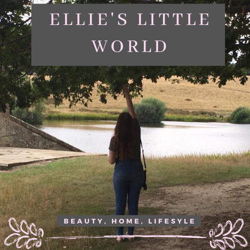 Ellie's Little World